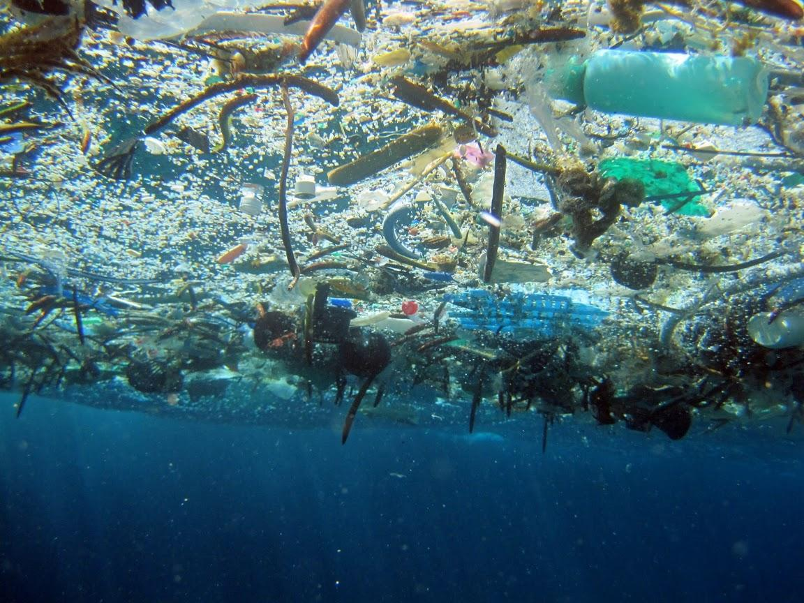 marine-debris